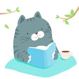 Fluffy Cat Reading Book In Garden Stock Photos