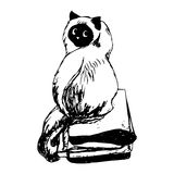 Fluffy cat sitting on books. Graphic image of a cat, fluffy sweetheart. Figure handle from the hand on white paper. Vector on white background, abstract Stock Photography