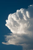 Fluffy cloud Stock Images