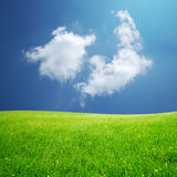 Fluffy cloud and green field Royalty Free Stock Images