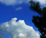 Fluffy cloud Stock Image
