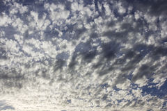 Fluffy clouds in the blue sky Stock Images