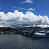Fluffy Clouds in Harbor royalty free stock photos