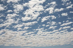 Fluffy clouds. Summer sky with fluffy clouds Royalty Free Stock Photos