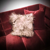 Fluffy cushion on red velvet sofa Stock Images