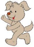 Fluffy dog running Royalty Free Stock Photography
