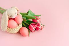 Fluffy Easter rabbit with bright pink colorsd eggs in the basket on pastel rose background decorated with tulips. royalty free stock images