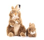 Fluffy easter rabbits. Stock Images