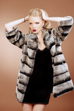 Fluffy fashion royalty free stock images