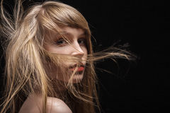 Fluffy flying hair Royalty Free Stock Photo