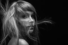 Fluffy flying hair Royalty Free Stock Photography