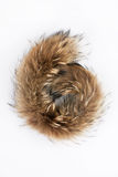 Fluffy folded piece of fur Stock Photography