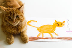 Fluffy ginger cat lyes on a child's drawing. Isolated on white background royalty free stock photo