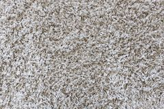 Fluffy gray carpet background and texture. Fluffy gray carpet background texture stock images