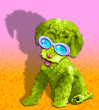 fluffy green glamour pup Royalty Free Stock Photography