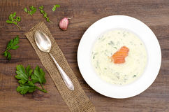 Fluffy herb soup with salmon Royalty Free Stock Photo