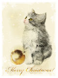 fluffy kitten and golden ball. Vintage styl Royalty Free Stock Photos
