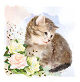 Fluffy kitten with roses. Stock Photography