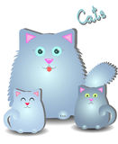 Fluffy mother cat with two kittens. Fluffy cat mom with two cute kittens,  on white background Stock Photos