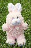 Fluffy pink Easter bunny on grass Stock Images