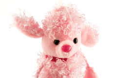 Fluffy pink poodle toy isolated on white Royalty Free Stock Image