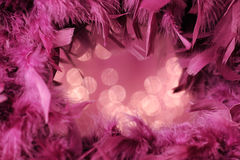 Fluffy purple frame Royalty Free Stock Photography