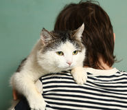 Fluffy red cat sitting on a boy`s shoulder Royalty Free Stock Image