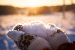 Fluffy sparkling white snow on hands Stock Image