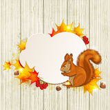 Fluffy squirrel and maple leaves Stock Image