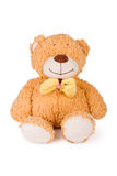 Fluffy teddy bear. On white background stock photo