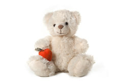 Fluffy teddy bear Stock Image