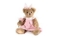 Fluffy teddy bear Royalty Free Stock Photos