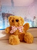 Fluffy teddy bear sits on the windowsill with a wet glass from the rain stock images