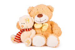 Fluffy teddy bears. Two fluffy teddy bears isolated on white background Royalty Free Stock Photos