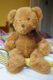 Fluffy teddybear Royalty Free Stock Photos