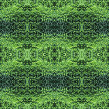 Fluffy thuja green needles background, backdrop for scrapbook, top view. seamless pattern kaleidoscope montage Royalty Free Stock Photos