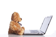 Fluffy toy bear and a laptop Stock Photo