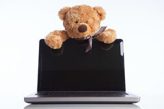 Fluffy toy bear and a laptop Stock Images