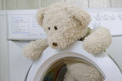 Fluffy toy in the washing machine Stock Image