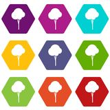 Fluffy tree icon set color hexahedron Stock Images