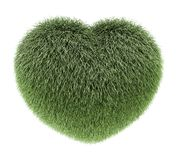 Fluffy warm heart green Stock Photos