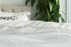 Fluffy, white duvet and blanket with decorative pillows, headboard and house plant. Comfortable, cozy bed with white bedding royalty free stock photos