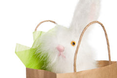 Fluffy white Easter bunny gift Stock Photo