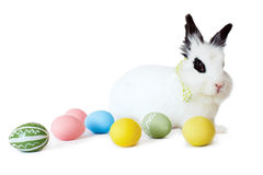 Fluffy white rabbit with Easter eggs Royalty Free Stock Photos