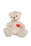 Fluffy white teddy bear with a heart Stock Image