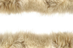 Fluffy wool texture Stock Photography