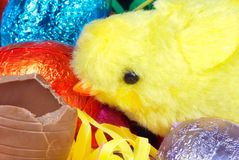 Fluffy Yellow Chick Eats Chocolate Egg Royalty Free Stock Photos