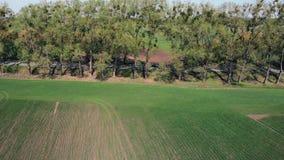 Flug über Bäumen und Feldern stock video footage