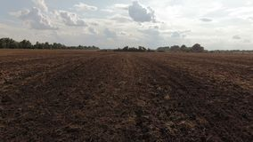 Flug über dem gepflogenen Feld agronomie Schattenbild des kauernden Gesch?ftsmannes stock video
