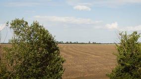Flug über dem gepflogenen Feld agronomie Schattenbild des kauernden Gesch?ftsmannes stock video footage